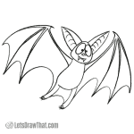 How to draw a bat: finished outline drawing