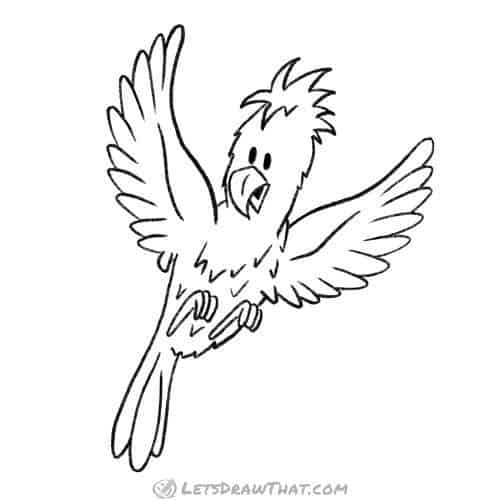 How to draw a bird: completed pencil outline - parrot