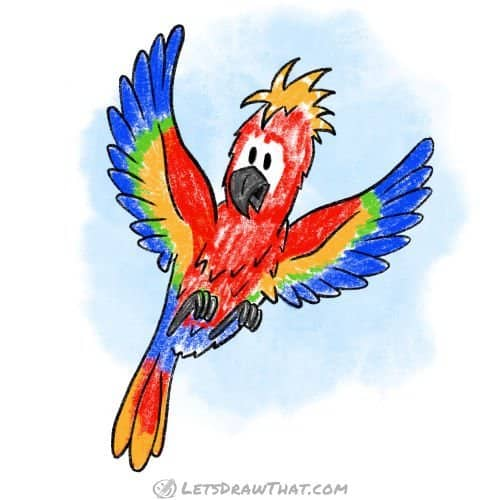 How to draw a bird: completed coloured in macaw parrot
