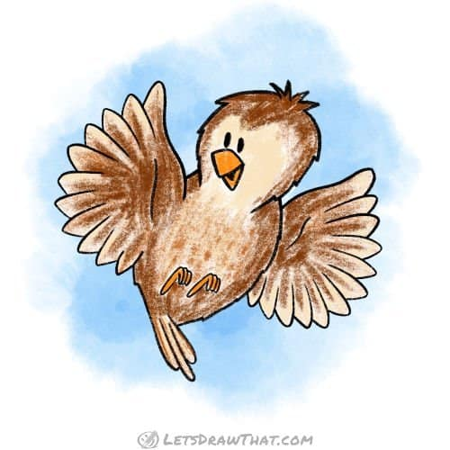How to draw a bird: completed coloured in wren