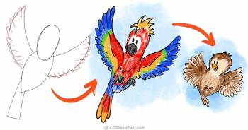 How to draw a bird: 2 birds from one easy sketch - step-by-step-drawing tutorial featured image