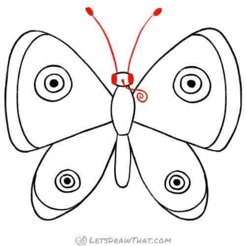 """Draw butterfly's """"face"""""""