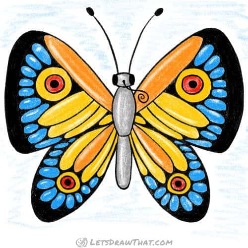 How to draw a butterfly: wing pattern drawing