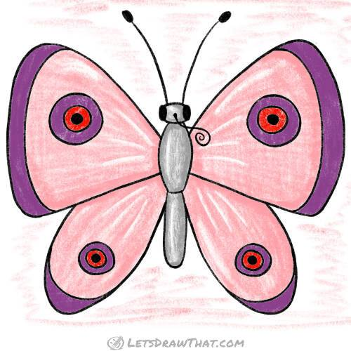 How to draw a butterfly: complete simple butterfly coloured in
