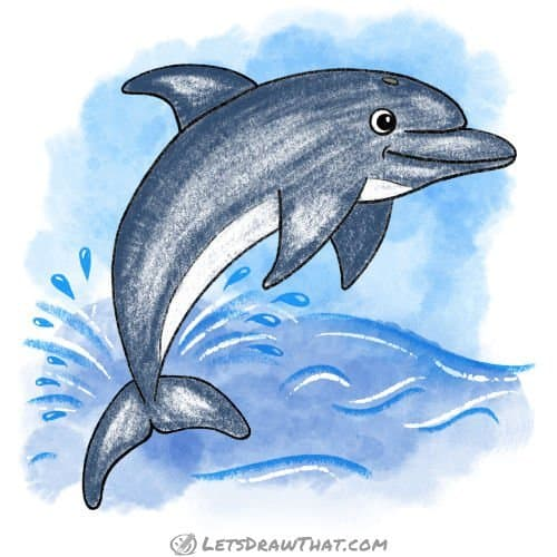 How to draw a dolphin: complete coloured-in drawing
