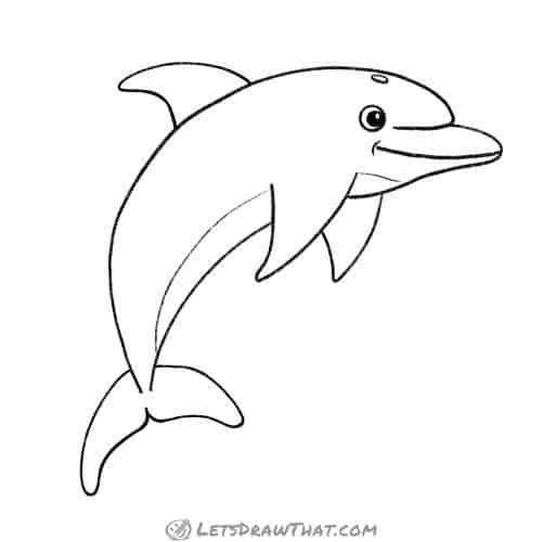 How to draw a dolphin: complete outline drawing
