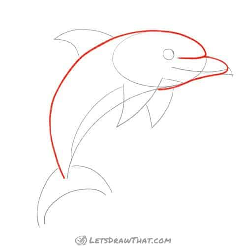 Drawing step: Draw the dolphin's body