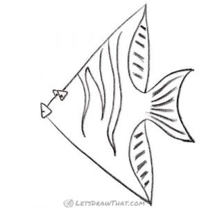 How to draw a fish from triangles - Clean up the drawing