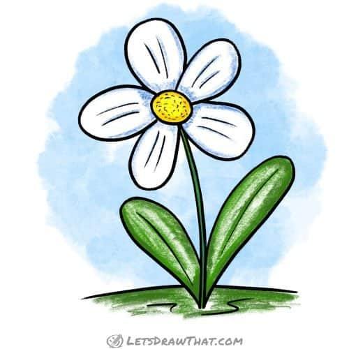Simple flower drawing: finished drawing coloured-in