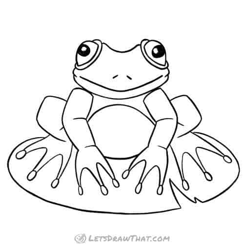 How to draw a frog: completed outline drawing
