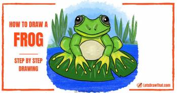 How to draw a frog - easy step by step drawing - step-by-step-drawing tutorial featured image