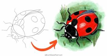 How to draw a ladybug - cute semi-realistic style - step-by-step-drawing tutorial featured image