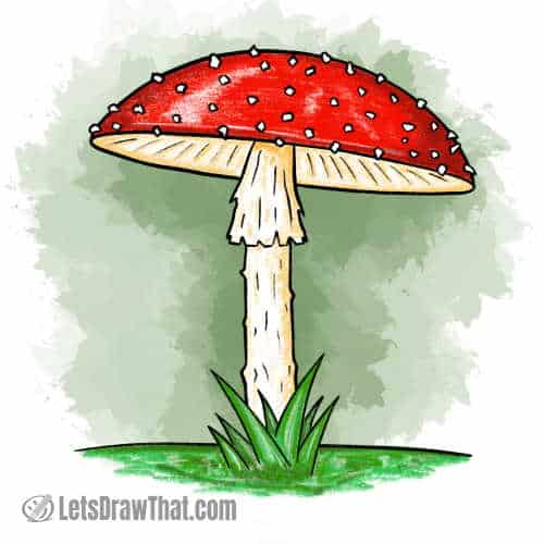 How to draw a mushroom: finished fly agaric mushroom drawing coloured-in