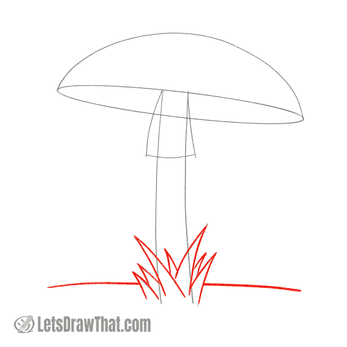 Drawing step: Draw the grass and the ground