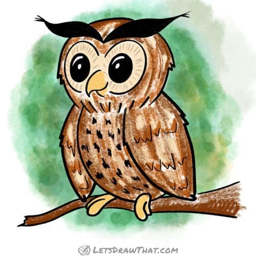 How to draw an owl - completed coloured-in drawing