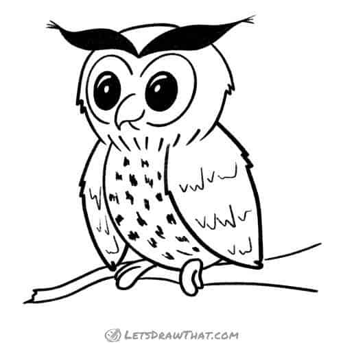 How to draw an owl - completed outline drawing