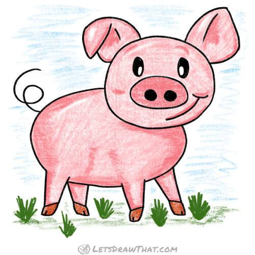 How to draw a pig: complete coloured in drawing