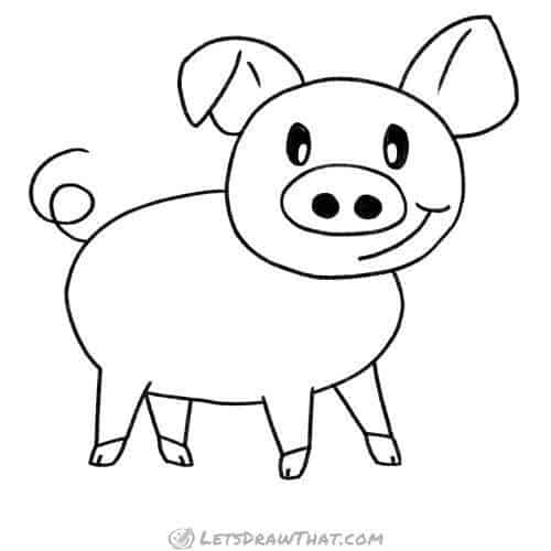 How to draw a pig: completed pencil outline drawing