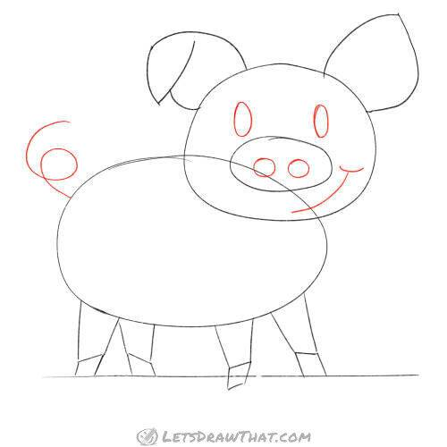 Draw the pig's face and tail