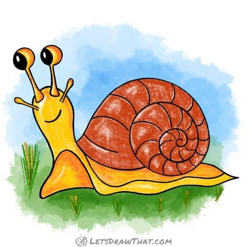 How to draw a snail: finished drawing coloured-in