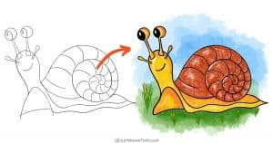 How to draw a snail: step-by-step drawing tutorial