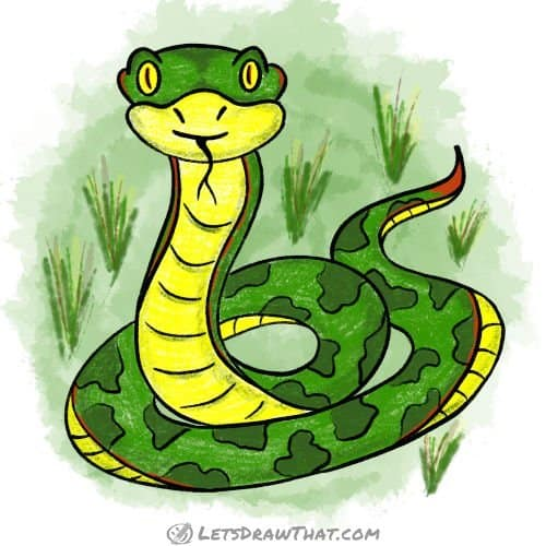 How to draw a snake - complete coloured-in-drawing
