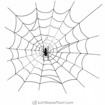 Spider web drawing - completed web with spider