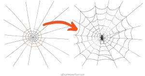 Spider web drawing - step-by-step drawing tutorial