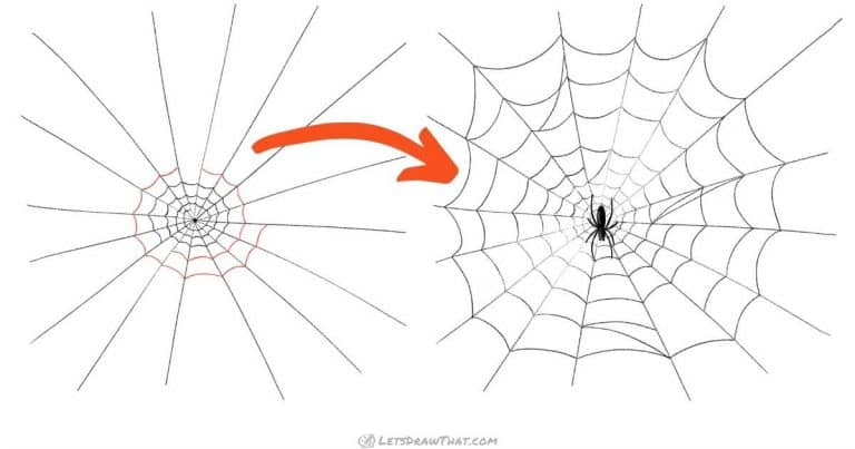 Spider web drawing - an easy semi-realistic web - step-by-step-drawing tutorial featured image
