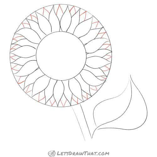 Drawing step: Draw the final layer of petal tips