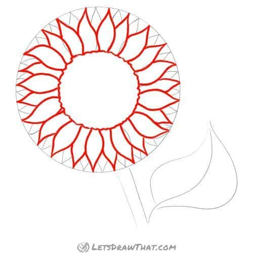 Drawing step: Draw out the seed disk and sunflower petals