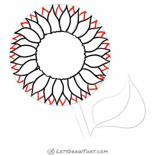 Drawing step: Draw the outer petals