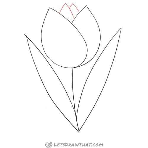 Drawing step: Add more petals into the middle