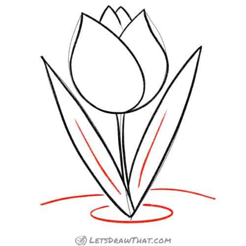 Drawing step: Add final details to the tulip
