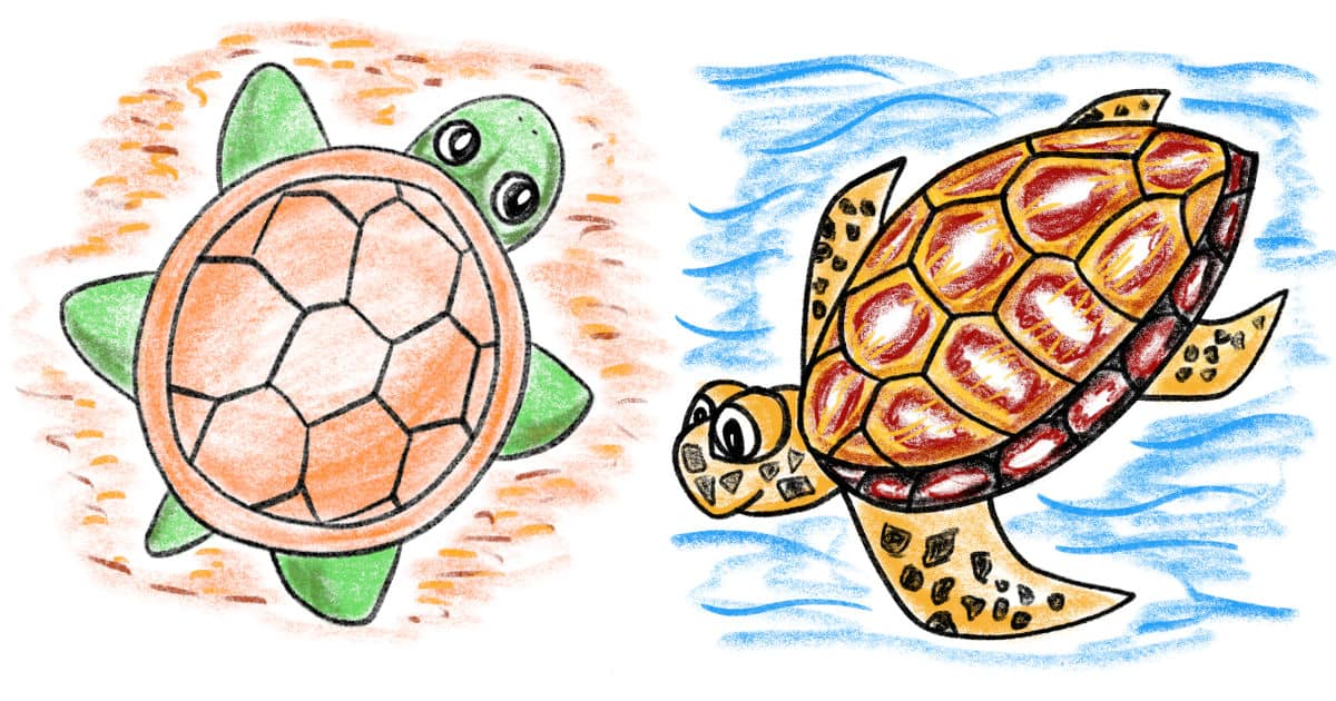 How to draw a turtle: two different ways - step by step drawing tutorial