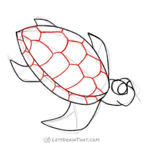 Draw a turtle shell pattern