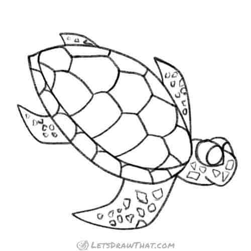 How to draw a turtle: completed pencil outline sea turtle drawing from an angle