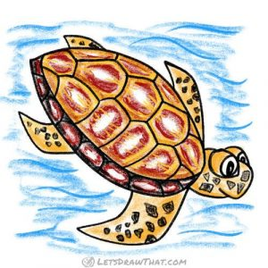 Complete sea turtle drawing