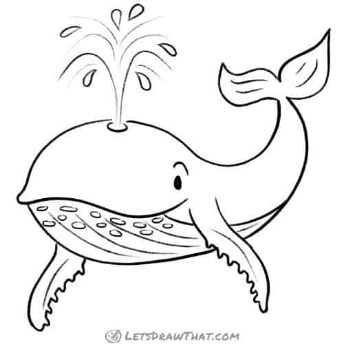 How to draw a whale: complete outline drawing